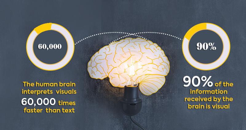 how-brain-interpret-visuals